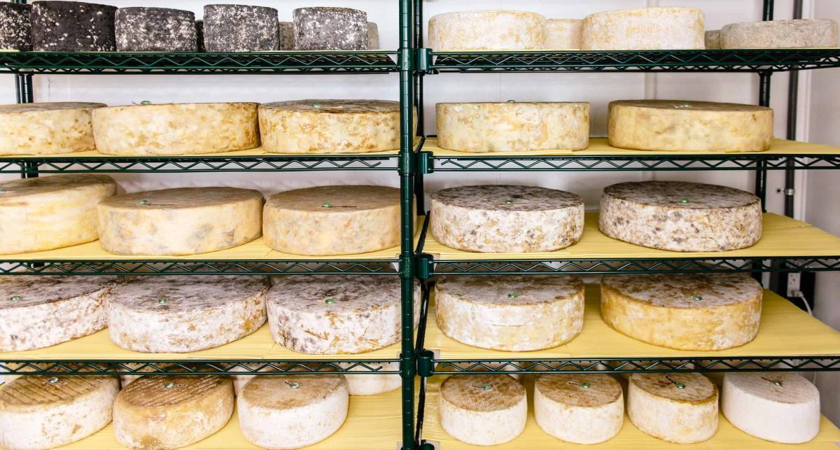 Cheese at Tony Caputo's