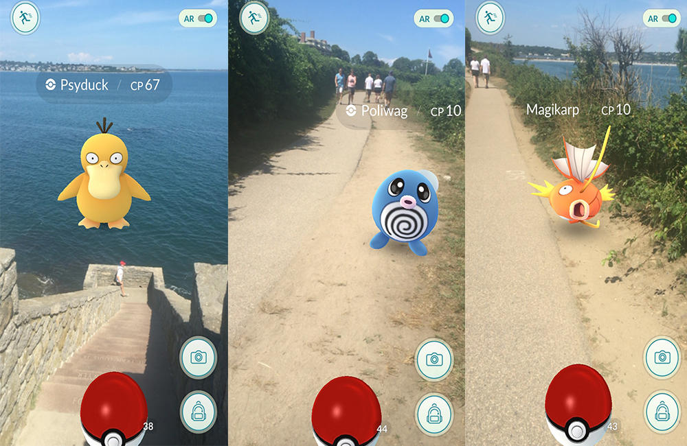 Cliff Walk Pokemon