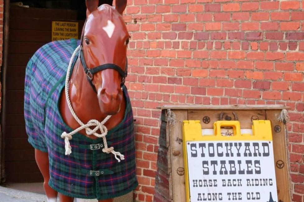 fort worth stockyards stables and horseback riding