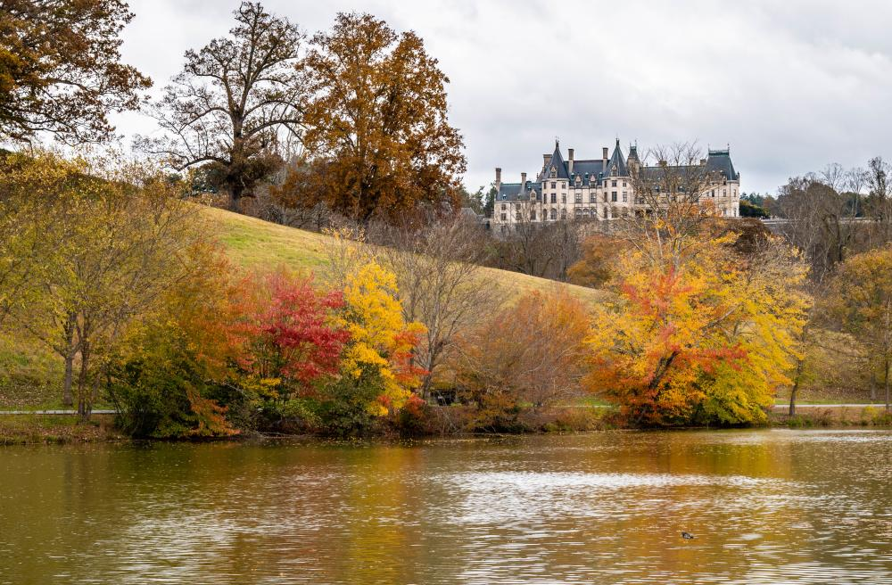 2018 Fall Color Biltmore November 1