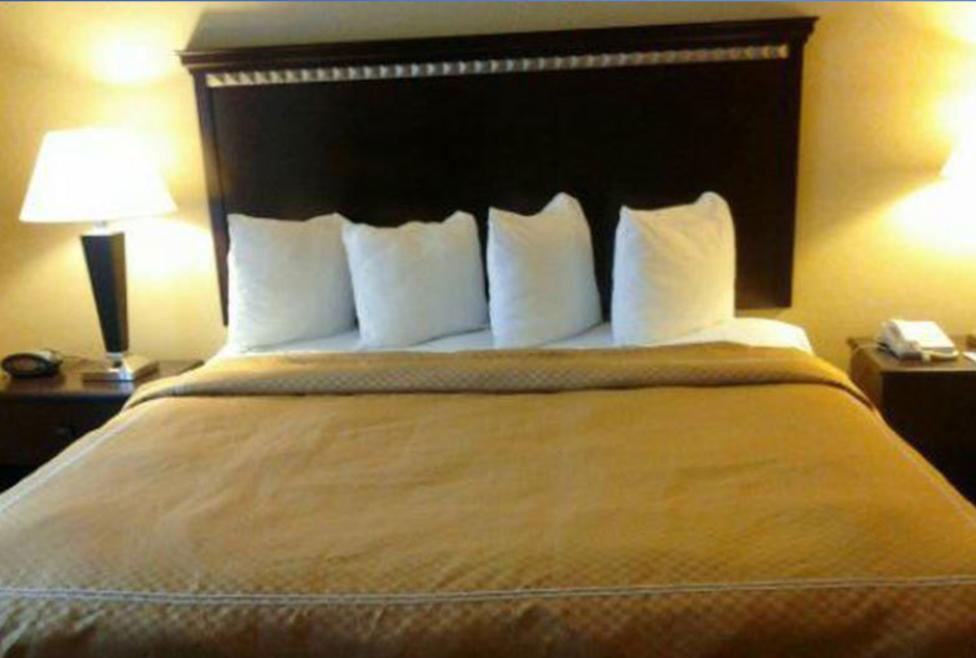 Comfort Suites DFW Airport King