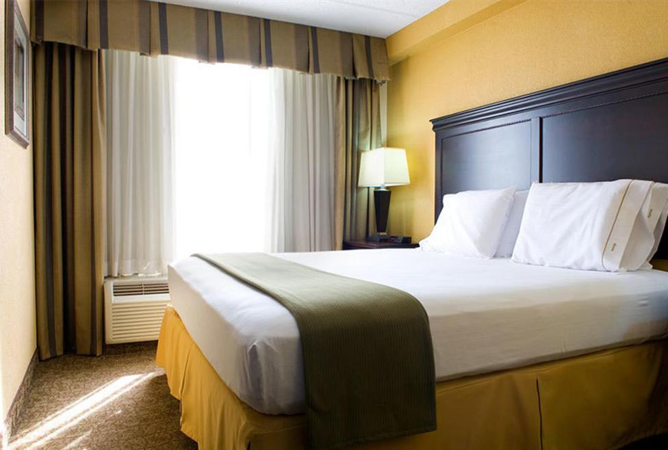 Holiday Inn Express Hotel & Suites - DFW Airport South - King