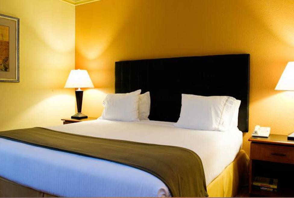 Holiday Inn Express Hotel & Suites - DFW Airport North - king