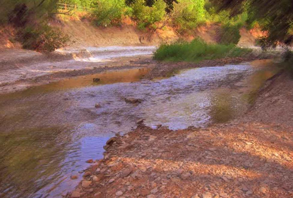 Spring Creek Nature Area