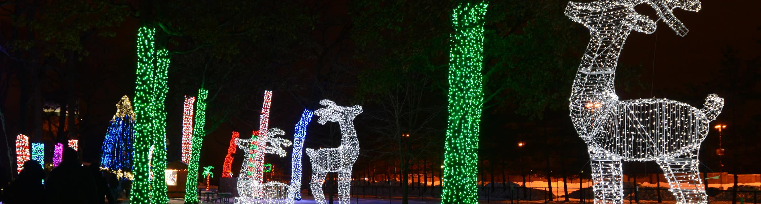 Zoo Lights: Henry Vilas Zoo