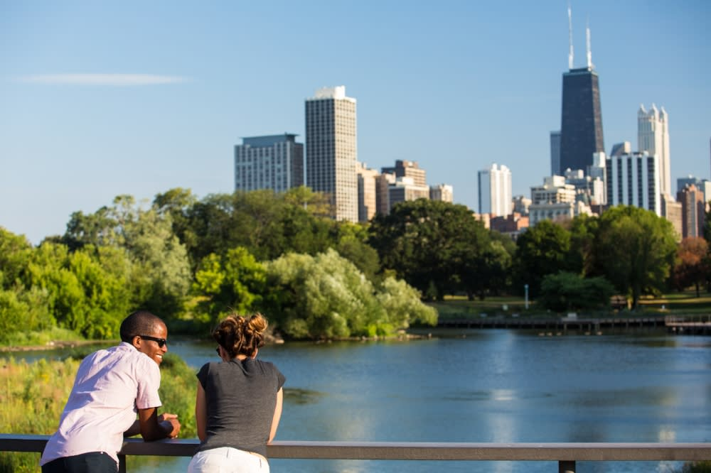 Chicago Skyline at Lincoln Park Zoo