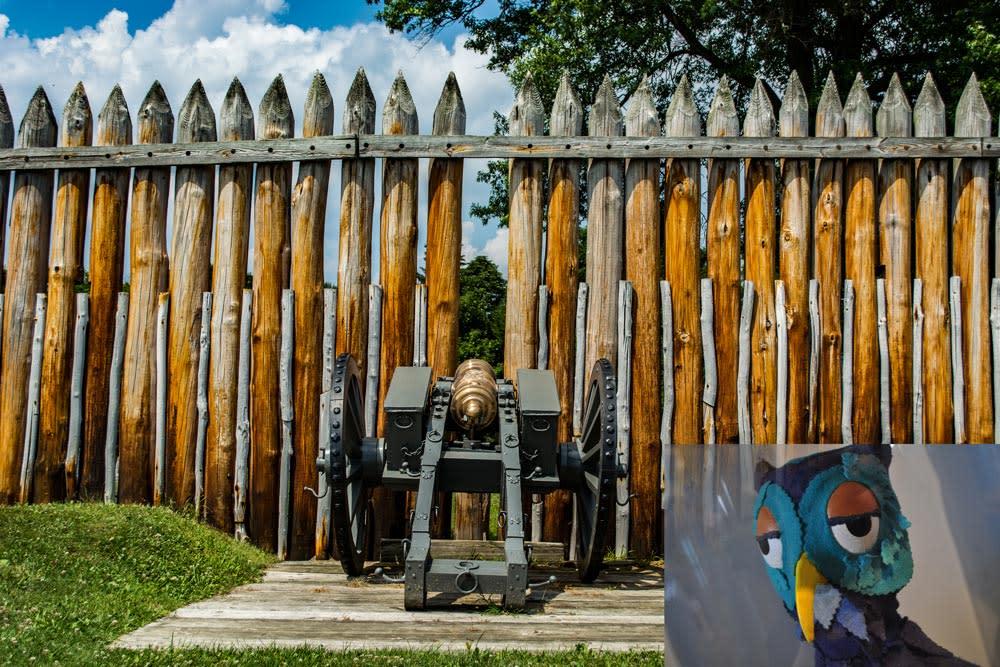 Fort Ligonier X the Owl