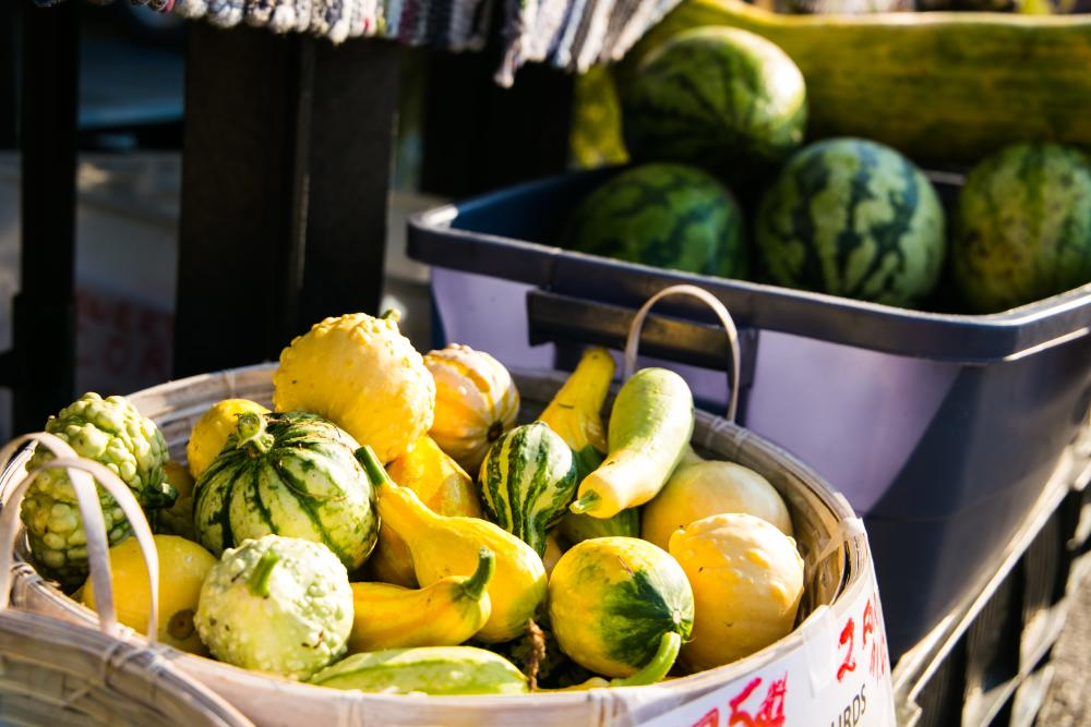 Squashes for sale at the farmers market in Elletsville