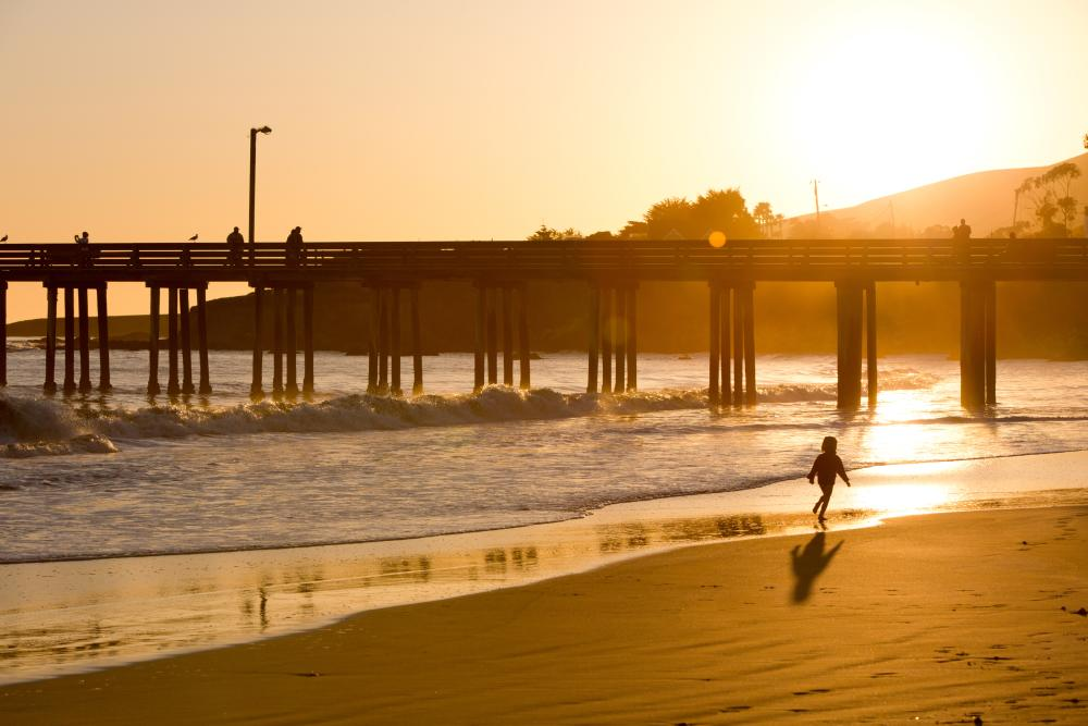 Cayucos Pier. Your pooch can join you here too!