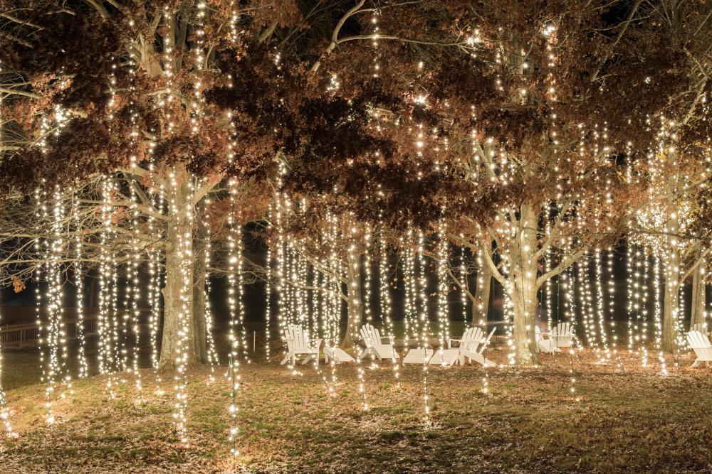 Christmas at Biltmore Antler Hill Village Lights