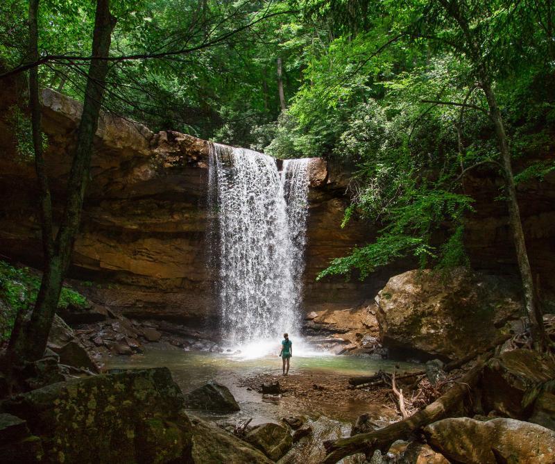 A Journey of Self: Wellness Retreat Blog