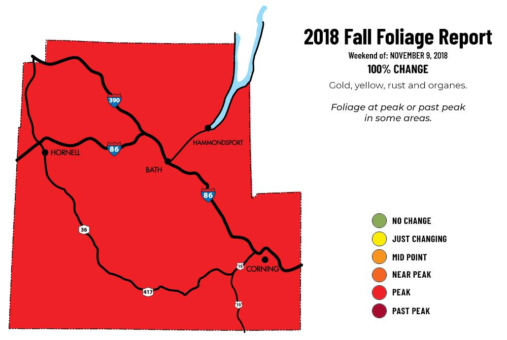 11092018 - fall report