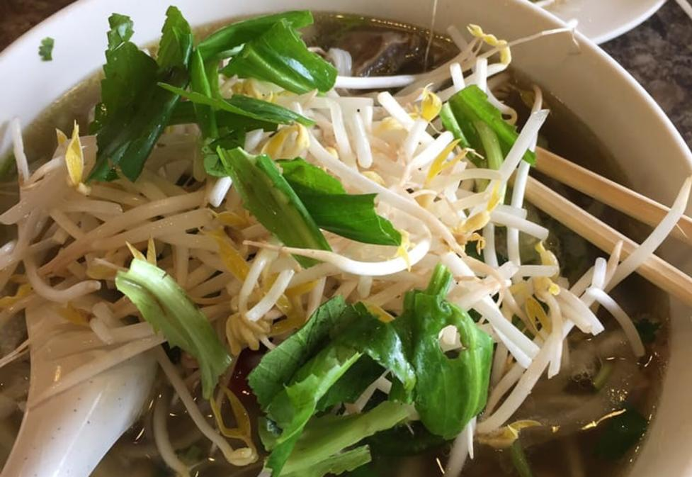 Pho Thanh Vietnamese Noodle House