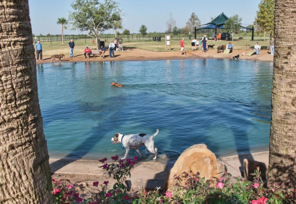 Pawm Springs Dog Park at Sugar Land Memorial Park