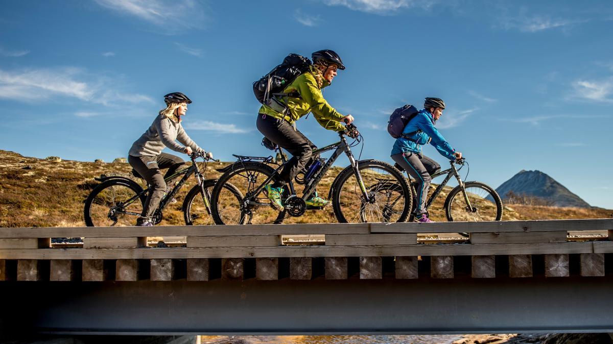 Cycling on Hardangervidda