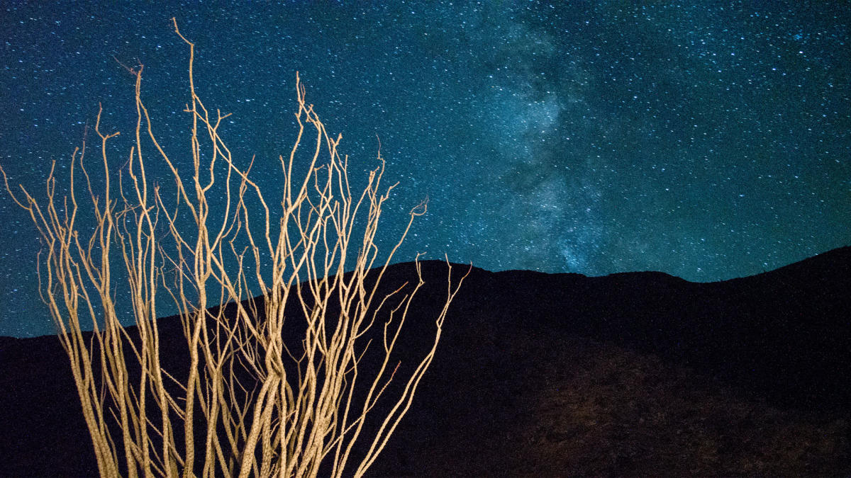 Anza Borrego at Night
