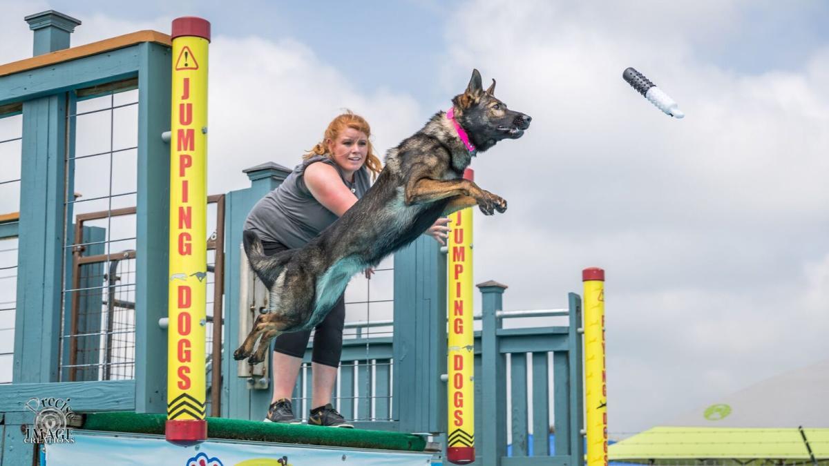 Dock Dogs Big Air