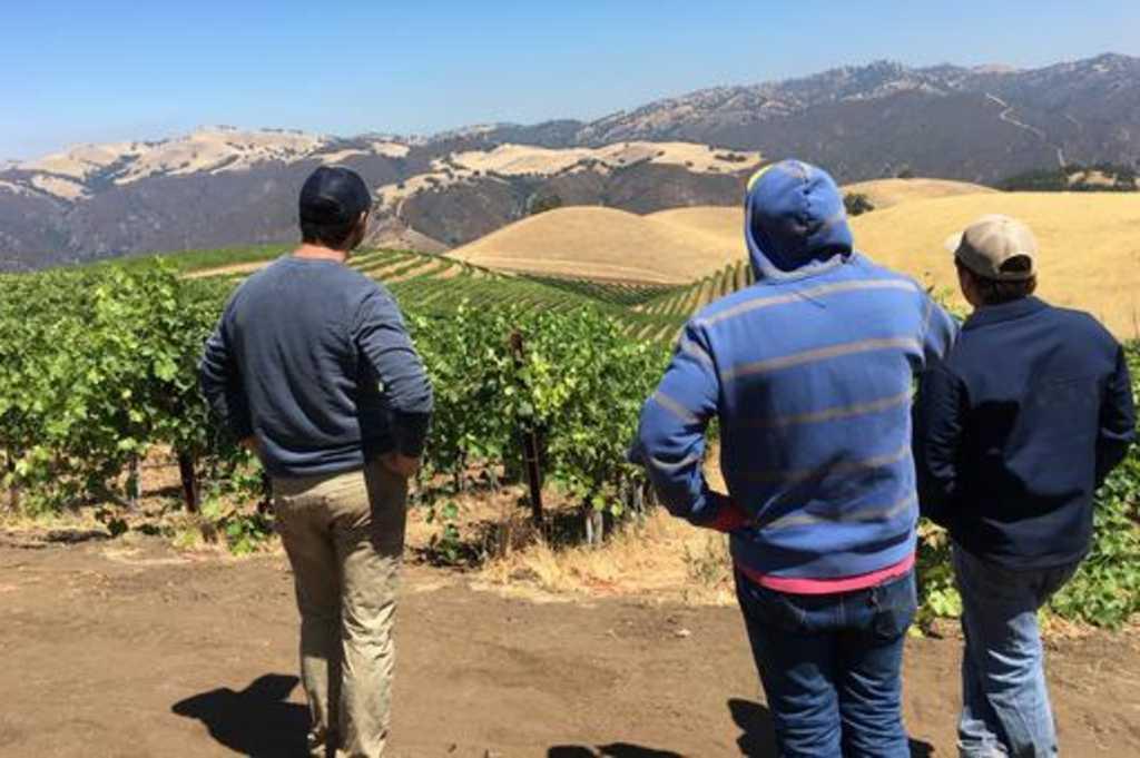 Subject To Change Wine Company