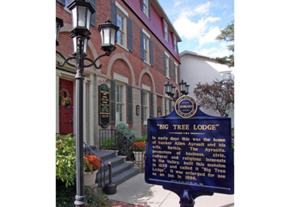 Big Tree Lounge