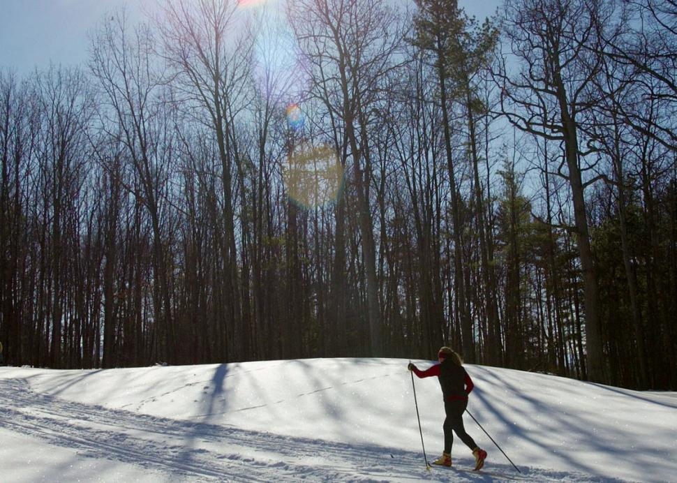 Cross country skiing at Bristol Harbour