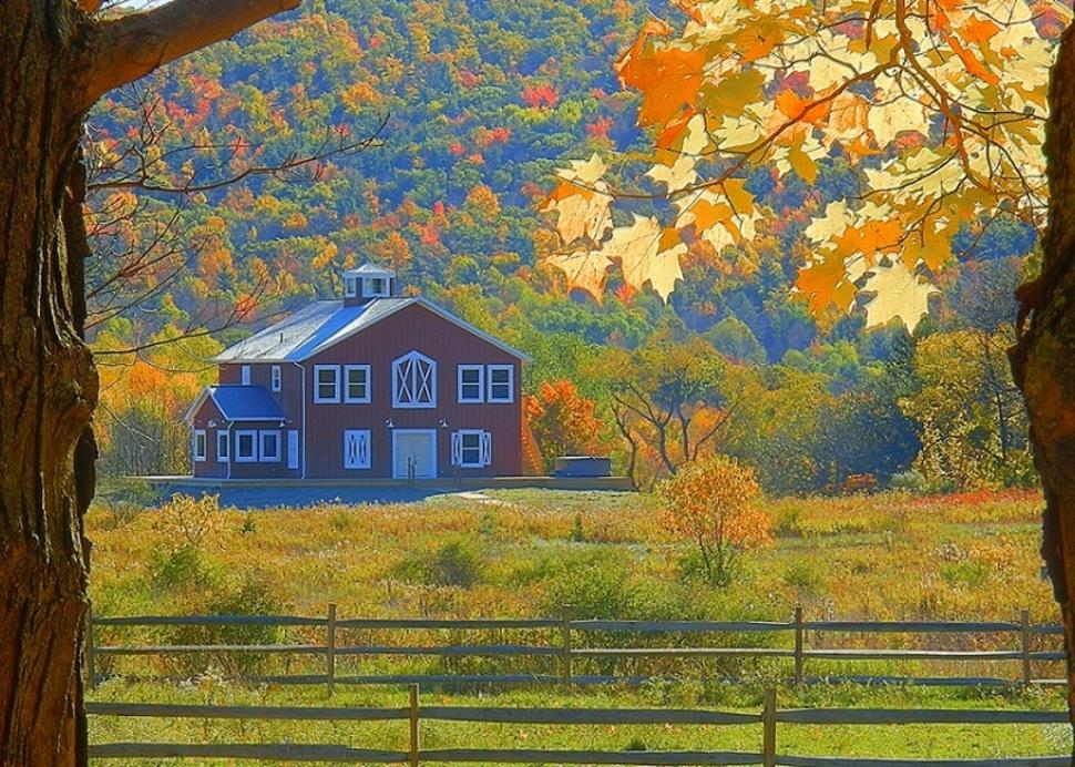 Carriage House in Fall
