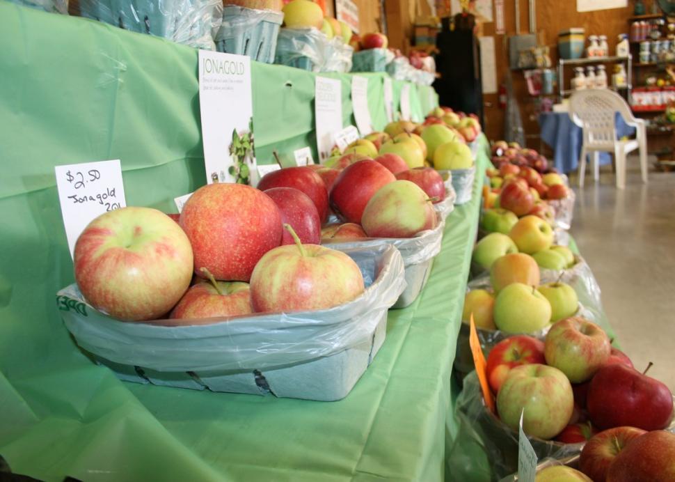 Farm fresh apples inside the market
