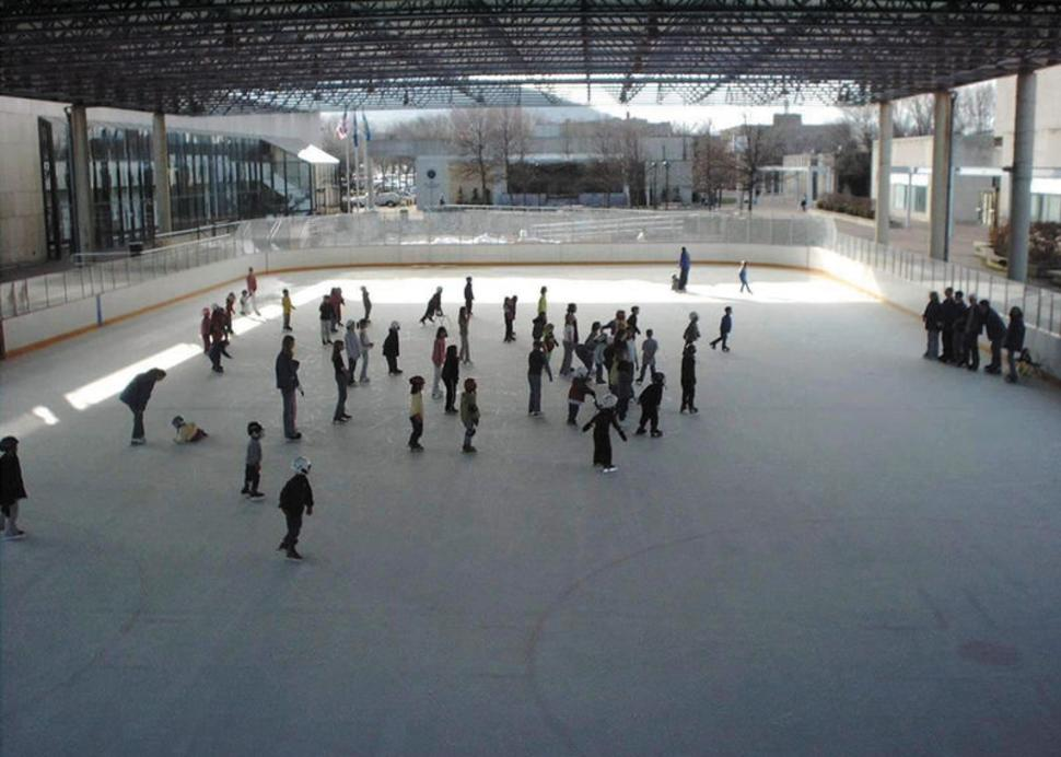 Nasser Civic Center Ice Rink