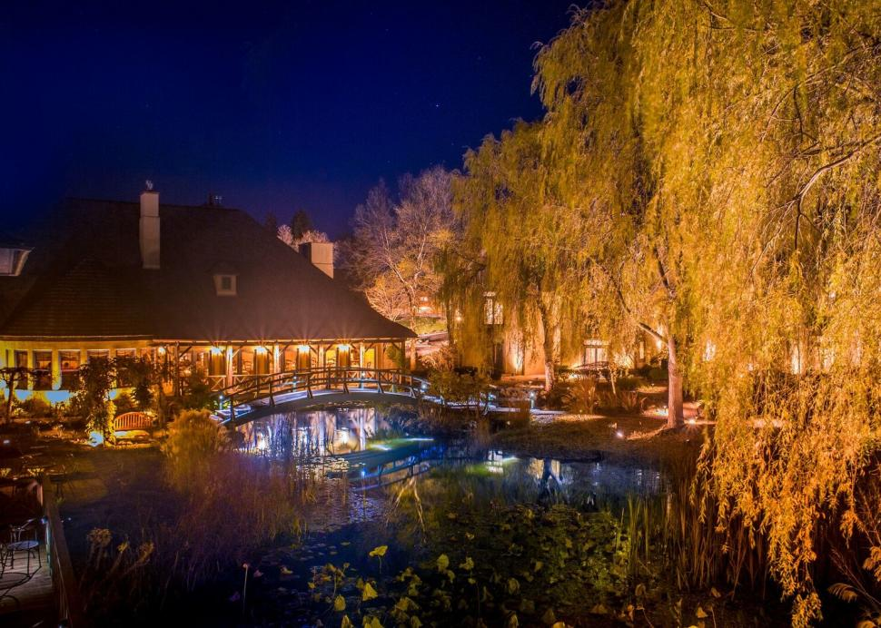 Monet Gardens at Night