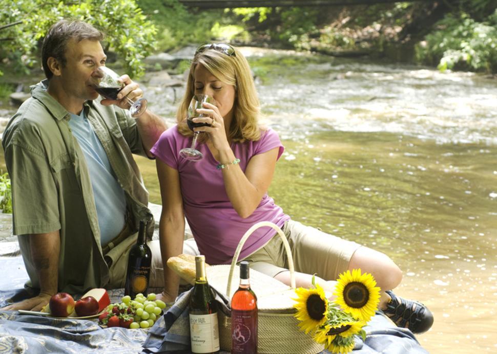 grimes-glen-park-naples-couple-having-picnic