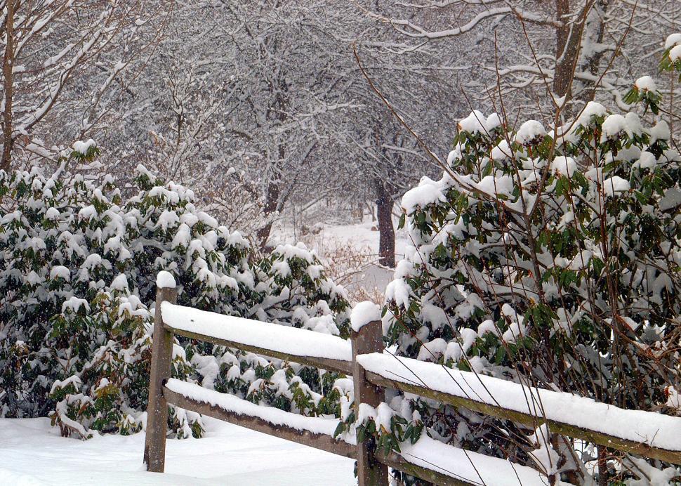 WinterScene6.jpg