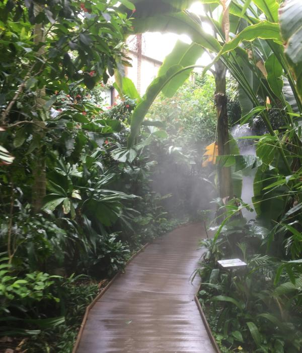 Inside the Indonesian Rain Forest at the Fort Wayne Children's Zoo
