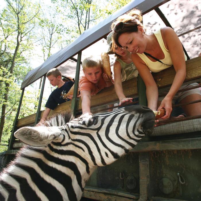 Catoctin Zoo Safari
