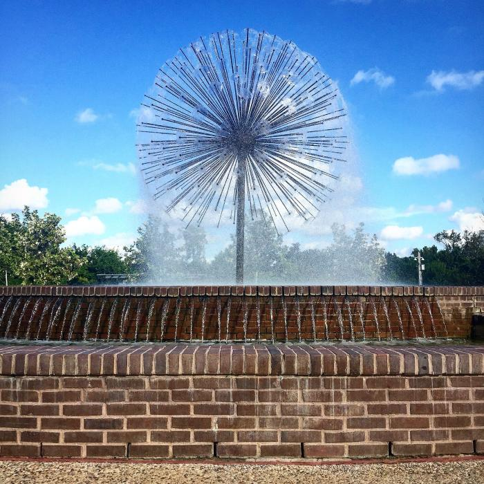 Dandelion Water Feature