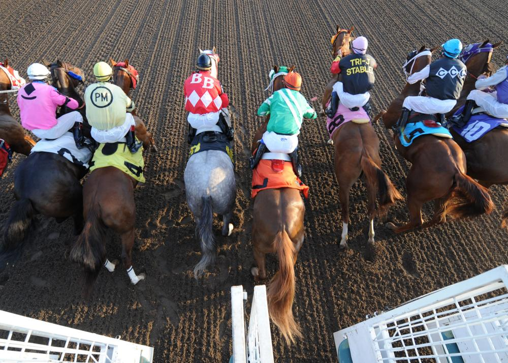 Festival of Racing Prairie Meadows