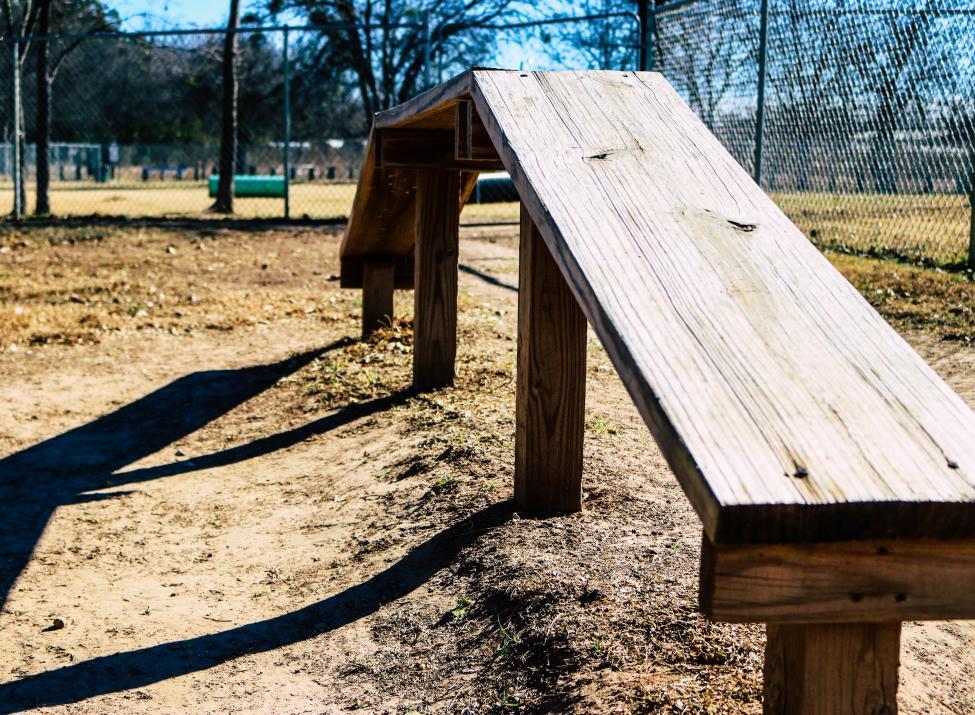City Bark Park