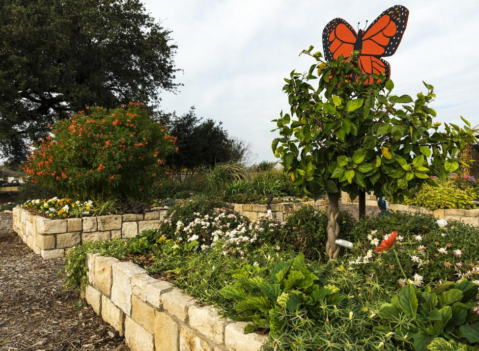 Lake Granbury Master Gardeners