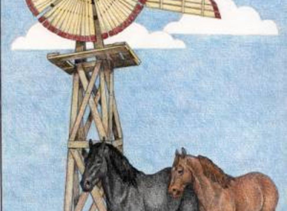 Windmill Farm Driving Tour