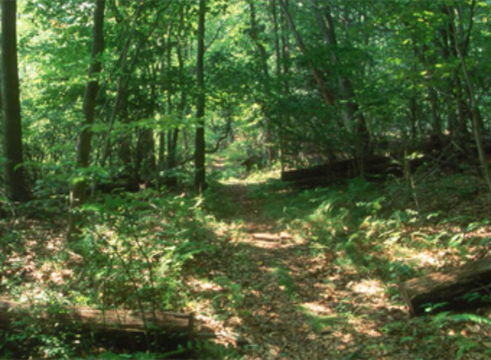 arthur w butler memorial sanctuary