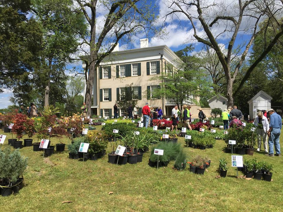 Lockerly Arboretum Plant Sale