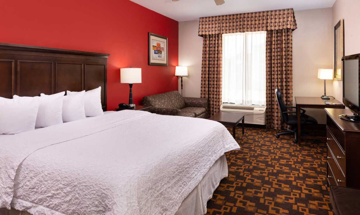 Hampton Inn LaPlace King Guest Room