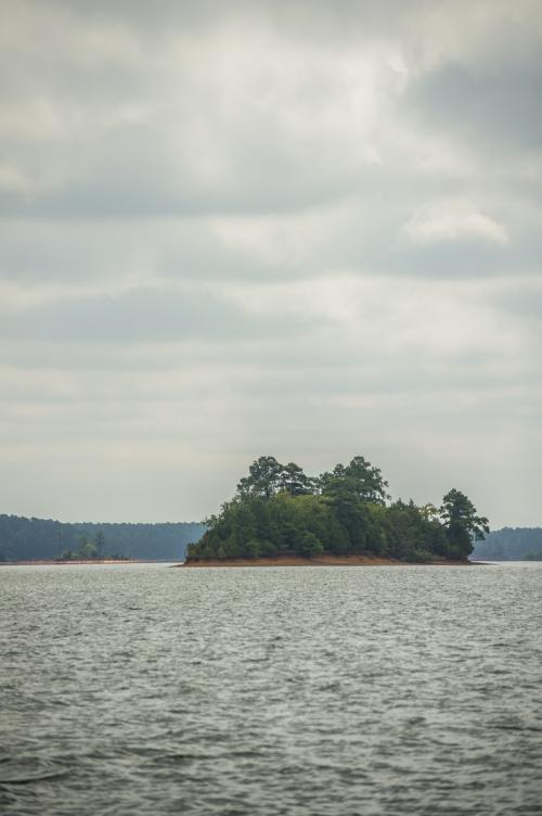 Clarks Hill Lake Verticle