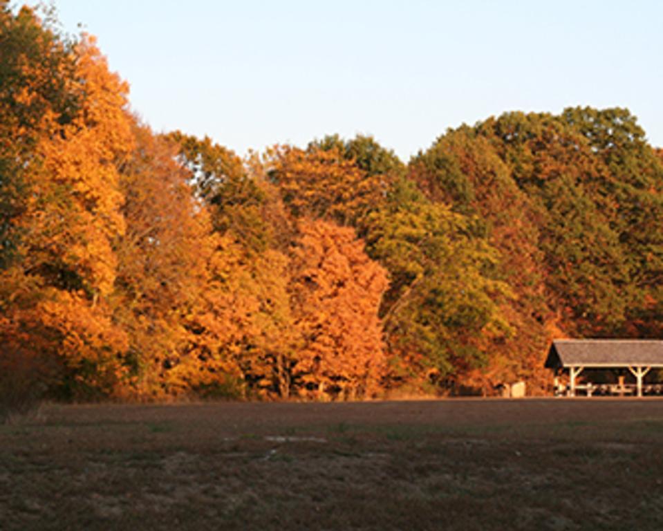 McCloud Nature Park
