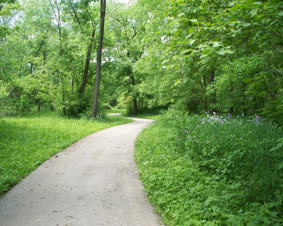 Trail at Arbuckle