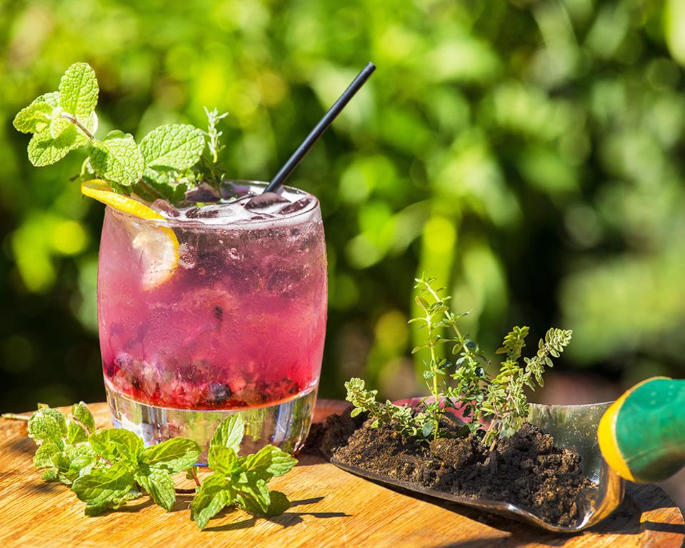 Craft Cocktail with Herbs