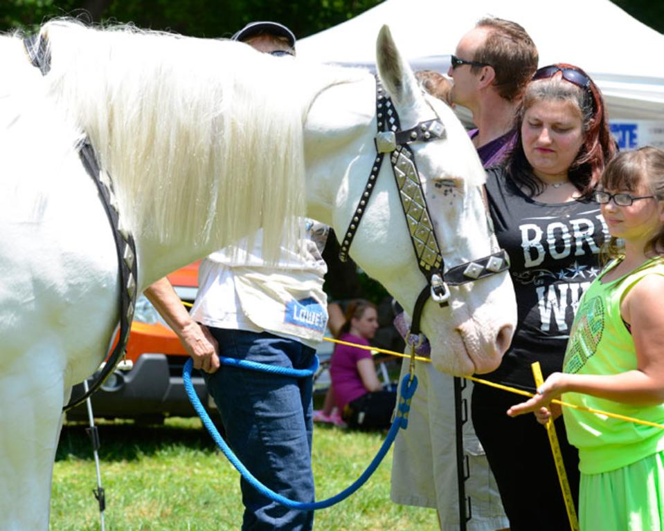 New Castle County Ice Cream Festival at Rockwood