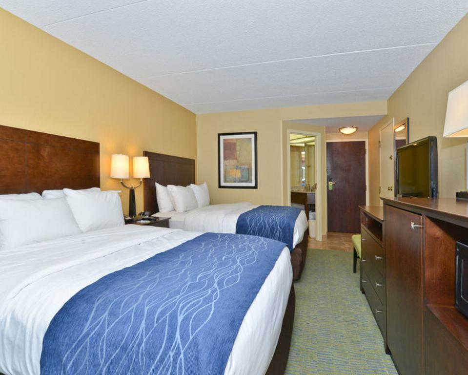Standard,Two Queen Beds