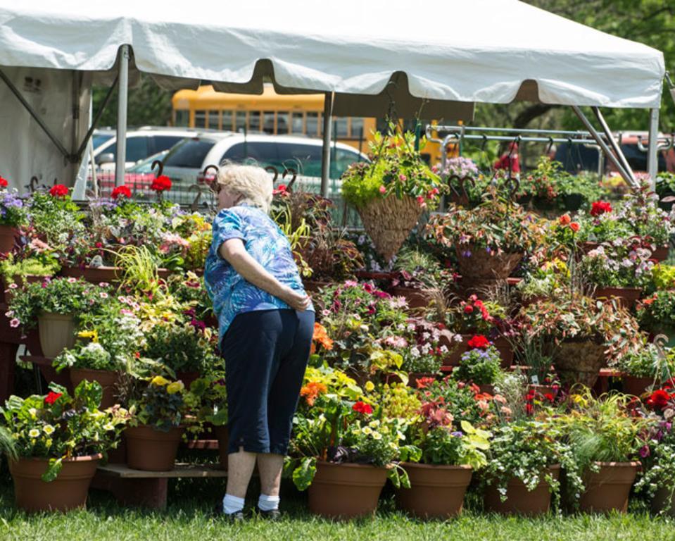 Wilmington Flower Market