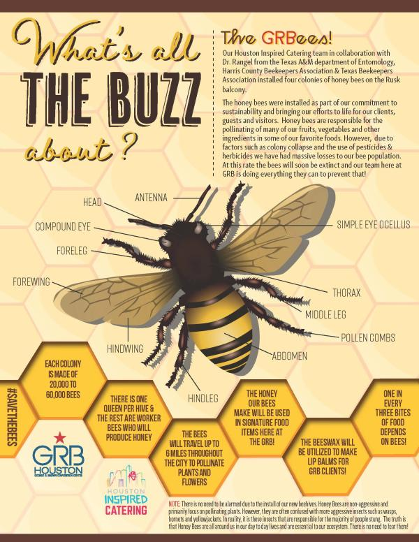bees fact sheet