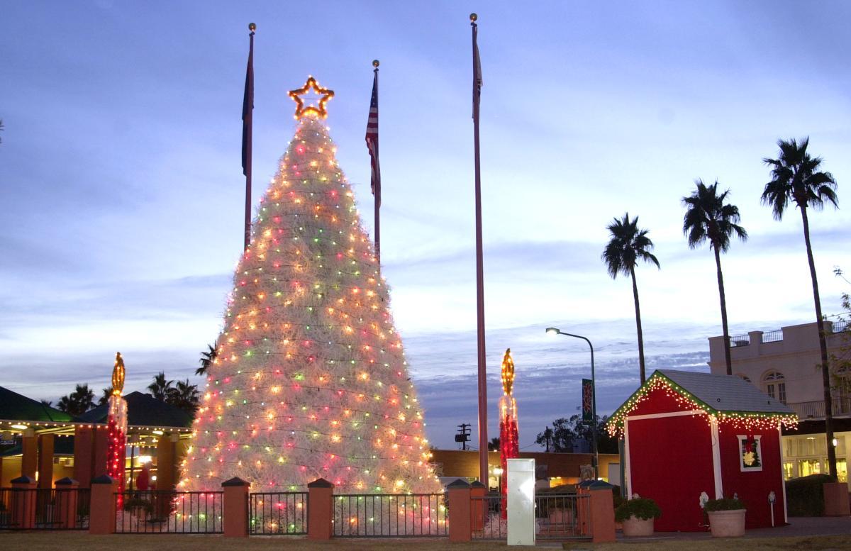 Tumbleweed Tree and Santa's House