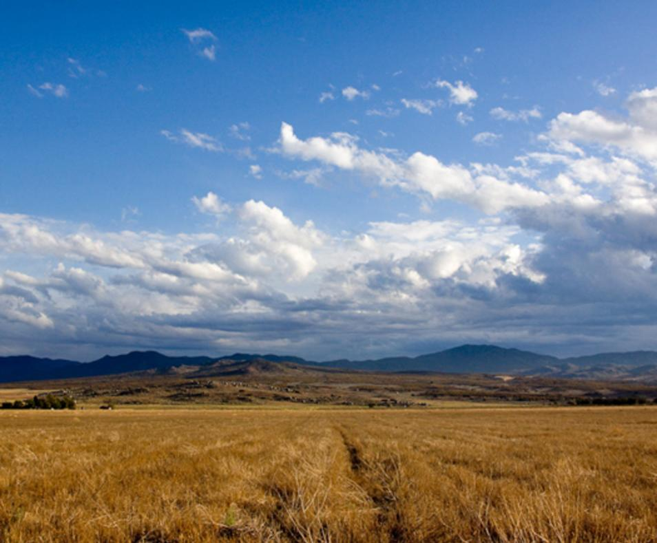 Anza Valley